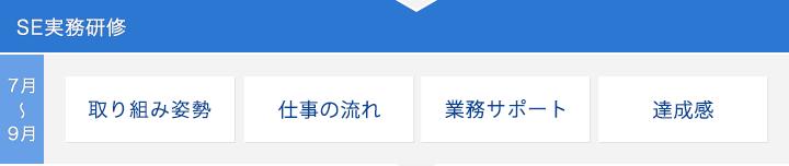 SE実務研修